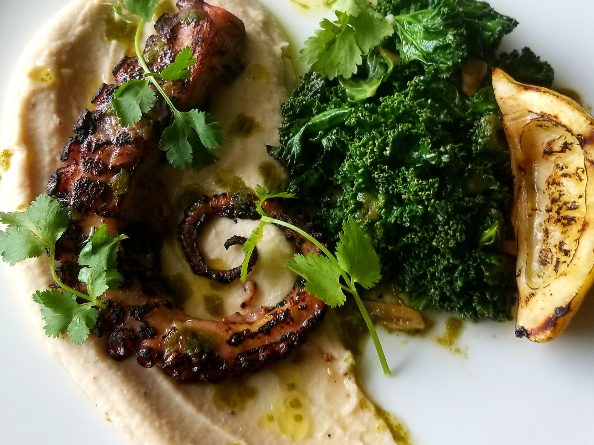 Charred Mediterranean Octopus with a Cilantro Chimichurri